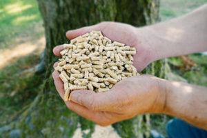 Le pellet et l'écologie