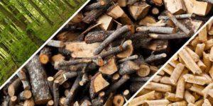 Pellet, granulé de bois : quelle est la différence??